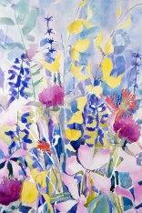 Santa Barbara Wildflowers IV
