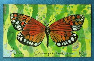 fcbutterflycard