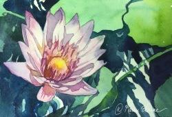 Dole Farms, Watercolor